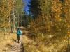 Robin Hiking White's Creek