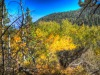 hillsideLight